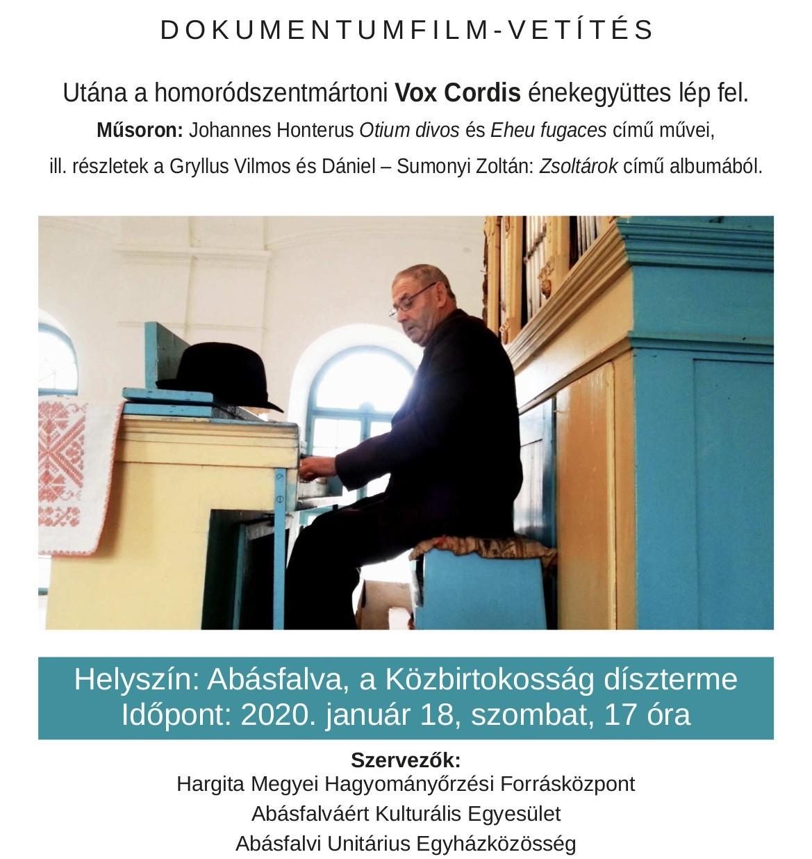 Ziua Culturii Maghiare în Aldea
